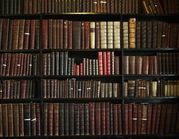 Шкаф с книгами. Фото: Christopher Furlong / Getty Images