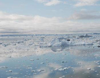 Льды в Беринговом Море. Фото: Slim ALLAGUI/AFP/Getty Images