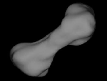 Астероид «216 Клеопатра». Фото с astronet.ru