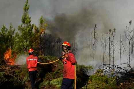 На греческом острове Тасос и в Португалии бушуют лесные пожары. Фото: FRANCISCO LEONG/AFP/GettyImages