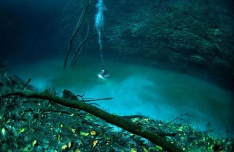 Красота подземных рек и озер Юкатана. Фото с сайта fresher.ru