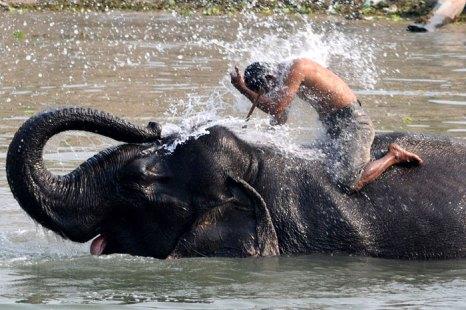 Экстремальный туризм – отдых для авантюристов. Фото: BIJU BORO/AFP/Getty Images