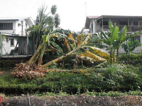 Тайфун Bopha обрушился на Филиппины. Фото: flickr.com