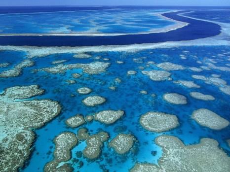 Большой барьерный риф.  Фото с сайта tourism.kulichki.net