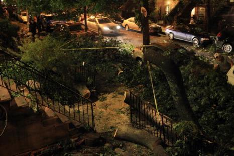Ураган в  Нью-Йорке.  За рулем автомобиля погибла женщина, пять человек пострадали. Фото: Spencer Platt/Getty Images