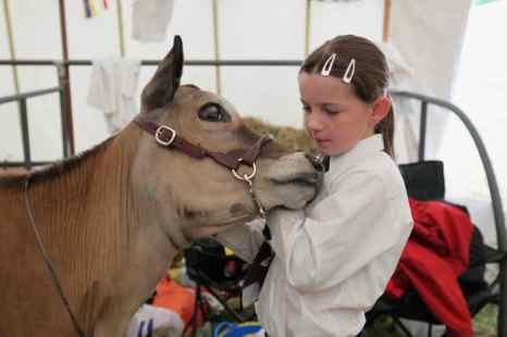Итальянские дети за развлечениями отправляются на фермы. Фото: Dan Kitwood/Getty Images