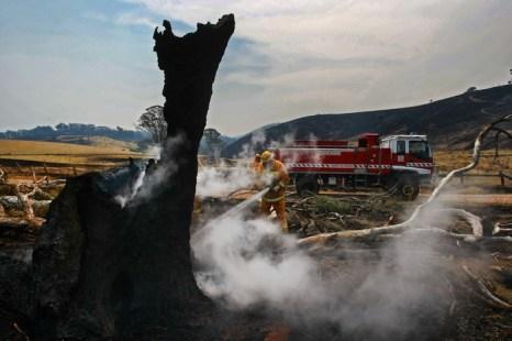 Пожары бушуют в штате Виктория, Австралия, 19 января 2013 года. Фото: Craig Sillitoe / Getty Images