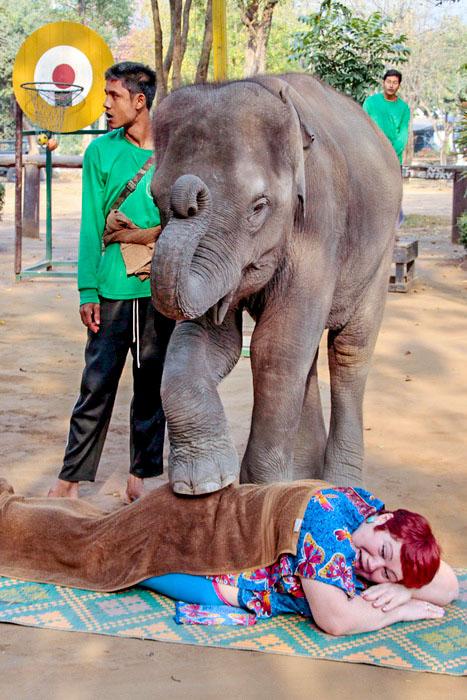 Массаж для туристов от юного слоника. Фото: Николай Карпов/Великая Эпоха (The Epoch Times)