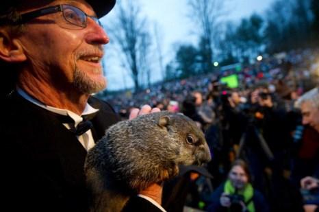 Сурок по имени Фил. Штат Пенсильвания, США, 2 февраля 2014 год. Фото: Jeff Swensen/Getty Images