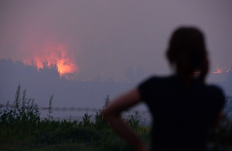 Жительница Сиднея смотрит на приближающийся огонь 10 сентября 2013 года. Фото: SAEED KHAN/AFP/Getty Images