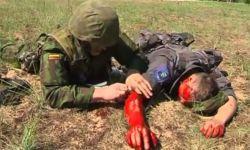 Чёрная стрела — 2014, военныеучения, НАТО, Литва