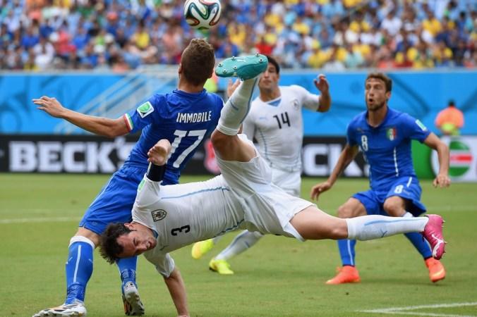 Футбол, чемпионат, ФИФА