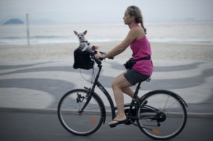 A woman takes her dog on a bicycle ride