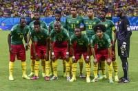 спорт, Чемпиона мира в Бразилии, футбол, Камерун, Хорватия