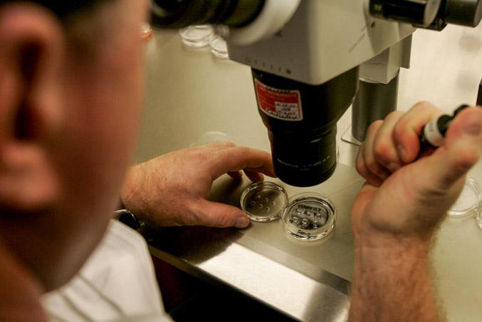 Лекарство для пациентов с сахарным диабетом нарушает работу щитовидной железы. Фото: Huffaker/Getty Images