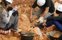 Владивосток, археологические раскопки, археологи, древнее поселение