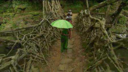 4_Root_Bridge_India-600x337