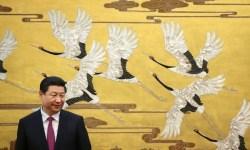 Президент Китая Си Цзиньпин в Доме народных собраний