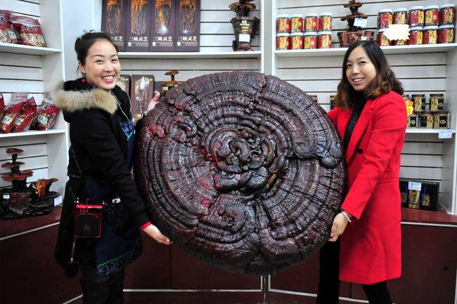 16 ноября 2015 года. Посёлок Тяньси провинции Хубэй. Фото: epochtimes.com