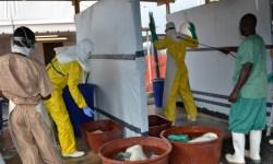 В Западной Африке зафиксировали новую смерть от Эболы.