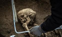 Ученые проведут раскопки в Эквадоре