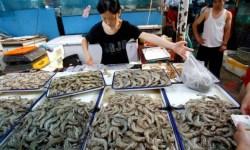 В Китае вводят гель в креветок