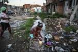 Учёные: распространению вируса Зика способствуют урбанизация, вырубка лесов, выброс мусора и другая деятельность человека, разрушающая окружающую среду.