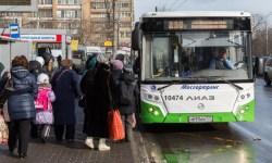 автобусы общественного транспорта Москвы