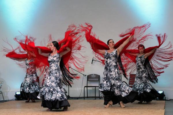 Фламенко в Никитском саду. Фото: Алла Лавриненко/Великая Эпоха