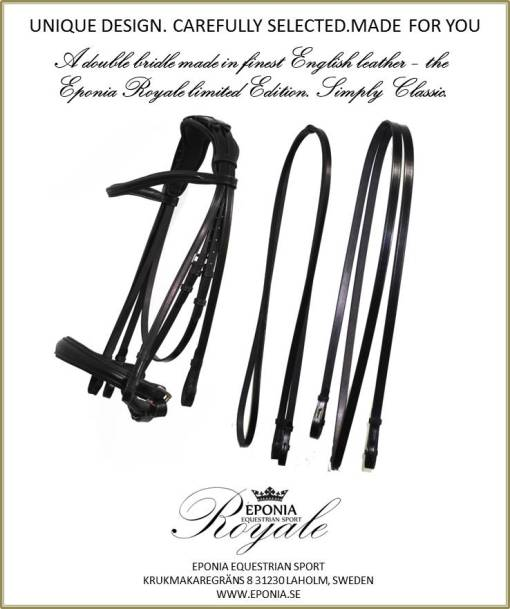 Double bridle in English leather