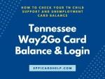 Tennessee Way2Go Card Balance and Login