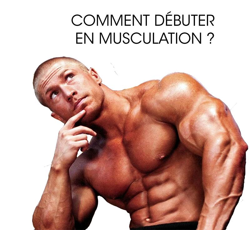 séance reprise musculation