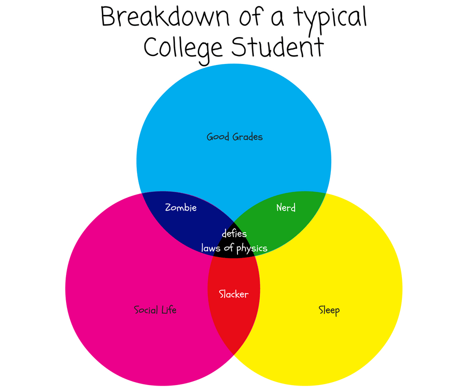 breakdown-of-a-typical