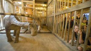 Inside Noah's Ark (photo from AP)