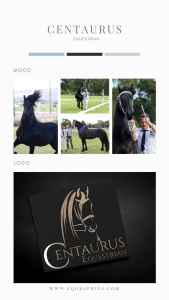 Equestrian Logos That are a Work of Art. Check Out This Stunning Friesian Mid-Trot