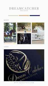 Andalusian Breeder's Ideas Come to Life in Dressage Dreamcatcher Logo