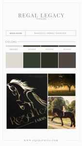 Natural Branding Colors for Edgy Friesian Horse Logo