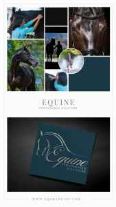 Simple & Chic Performance Horse Logo for Ocala Equine Massage Therapist