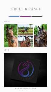 A Thrill a Minute with This Striking Custom Racehorse Logo