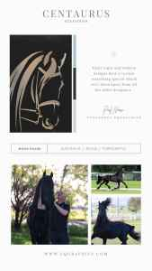 Put Your Best Foot (or Hoof) Forward with an Original Logo for Your Equine Business