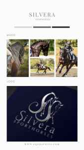 Stunning Detail-Dressage Horse Performs Extended Trot in This Gorgeous Custom Logo