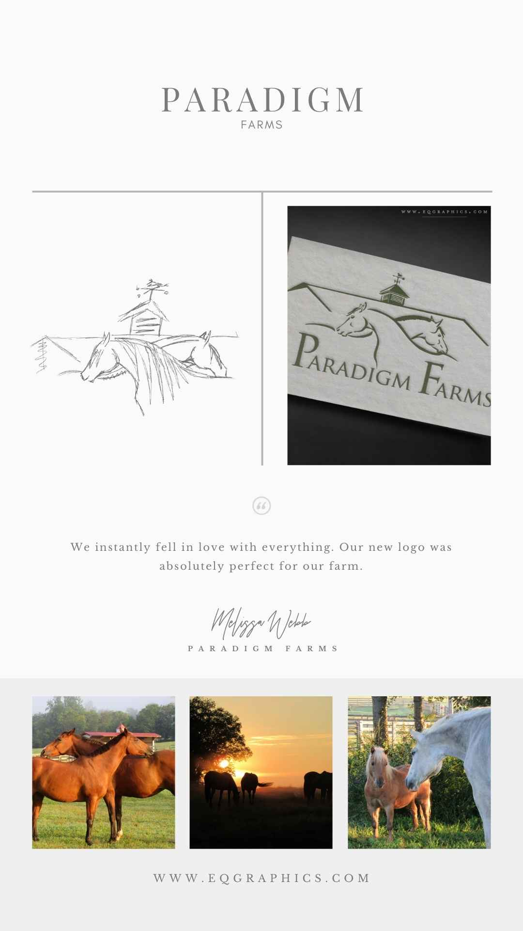 Design Process for Horse Retirement Farm Logo Started With Farm's Own Barn Inspiration