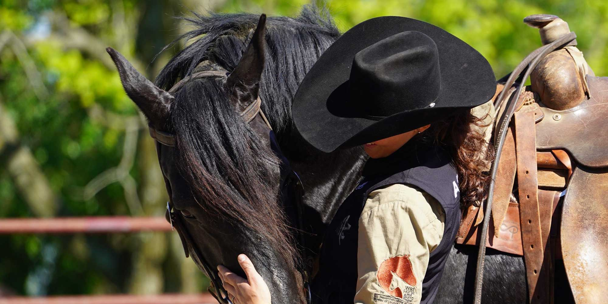 EQ Graphics | Irish Draught Horse and Cowgirl Portrait Photography