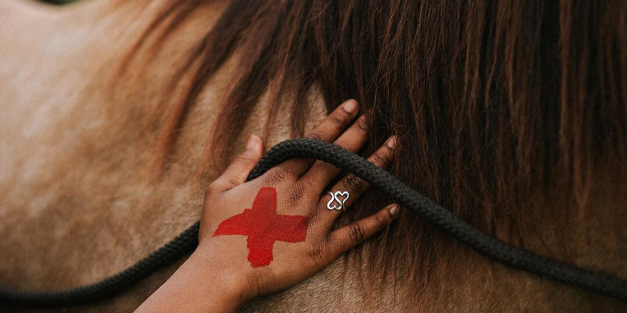 EQ Graphics | Hand on Horse Equine Assisted Therapy