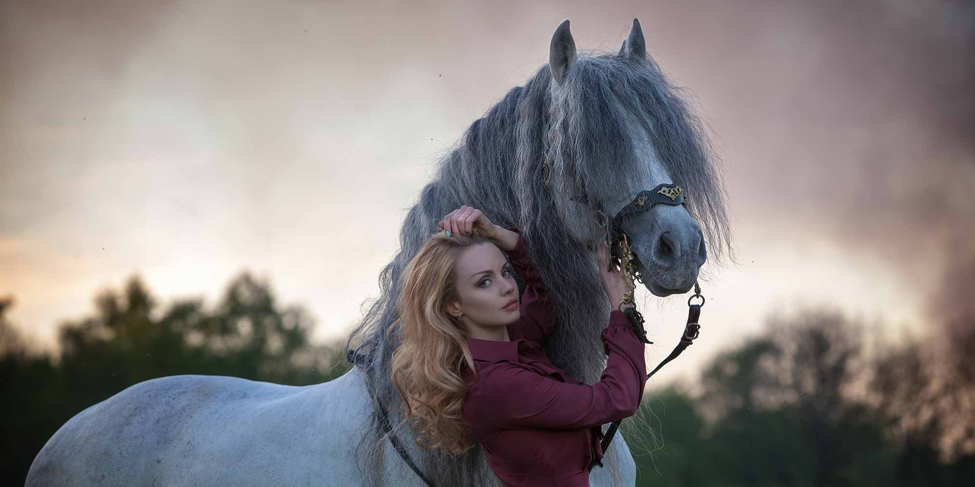 EQ Graphics   Andalusian Horse and Girl Photography