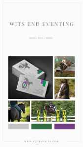 Colorful Jumping Horse Silhouette Logo Attracts Breeder's Ideal Client