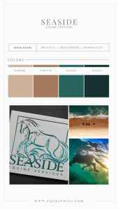 Beach Inspired Colors Paired with Striking Ocean Horse Logo for Equine Veterinarian