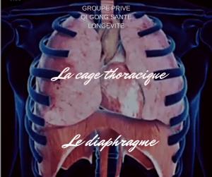 diaphragme respiration mal de dos