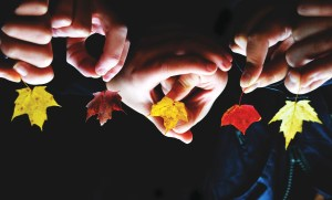 Hands holding Autumn leaves.