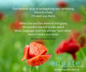 out-beyond-ideas-of-wrongdoing-and-rightdoing_rumi_equate